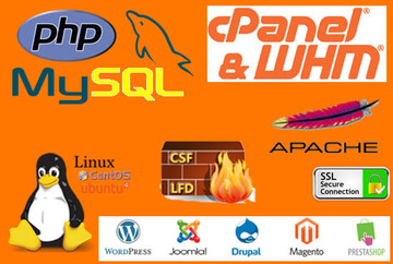 give support cpanel whm dns csf ssl sql php en espanol